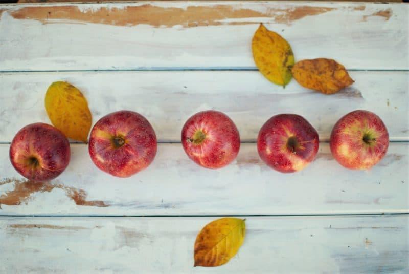 5つの習慣で生活改善